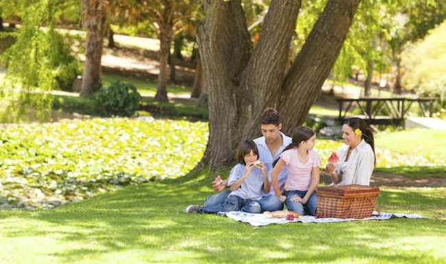 Family picnicking under large tree in park